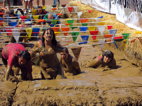 survivor mud run obstacle race