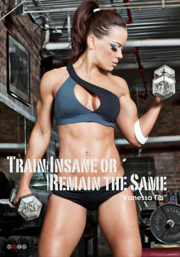 Fitness Motivational Quotes Train Insane Or Remain The Same (2)