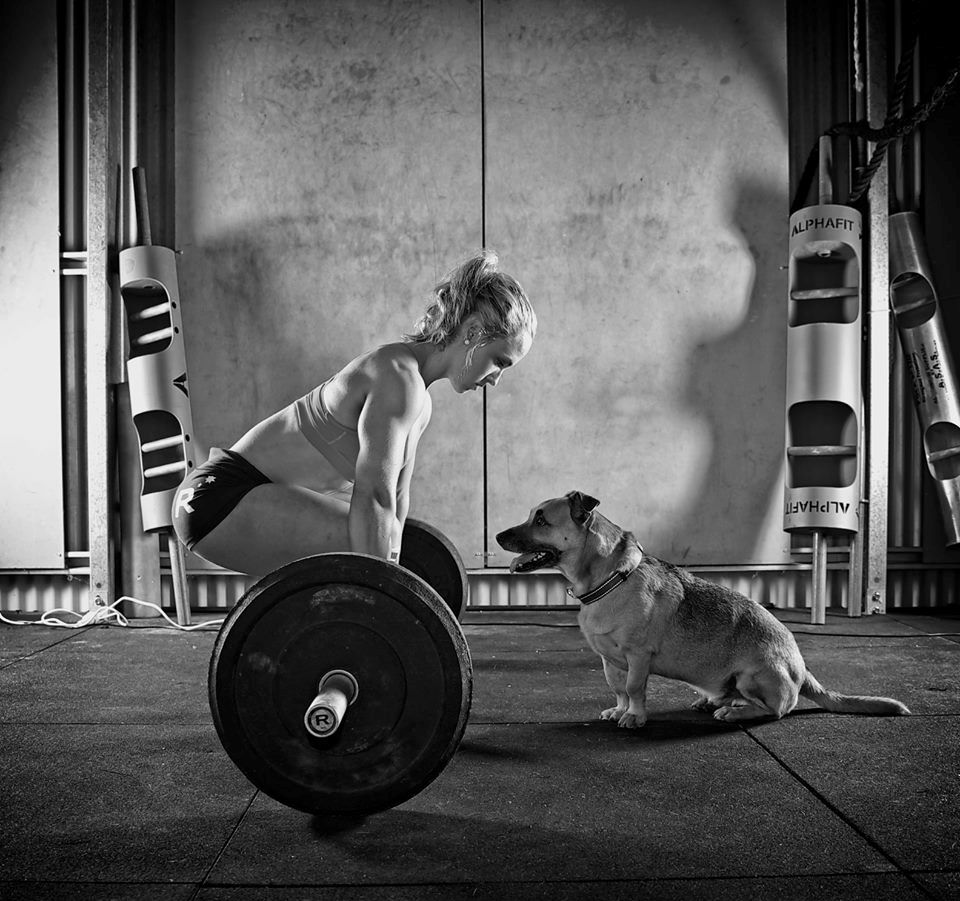 lift with a furry friend body motivation